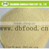 garlic granule 40-80 mesh with good quality from factory with GAP, BRC, HACCP& Kosher