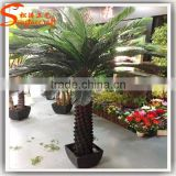indoor evergreen ornamental plants cycas revoluta artificial fake plastic evergreen trees for home decor