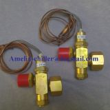 York chiller air conditioner parts 0205-38170-000 expanding valve