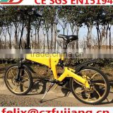 "2015 new folding electric bike 20"" with Li-ion battery CE EN15194 (FJTDM12)                                                                         Quality Choice"