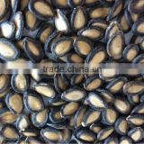 Good , big and black watermelon seeds ton price