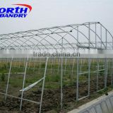 Hydroponic and NFT Sytems for Tomato Lettuce Strawberries and Vegetables in Commercial Greenhouses