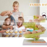 Egg Rack Egg Holder new 2015 New Products for kitchen storage comes with screw and tools set