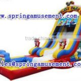 Funy mickey mouse water park, inflatable water slide with pool SP-PS29