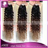 "New arrival best selling virgin human hair wholesale brazilian bulk hair extensions without weft 16"" in stock                                                                         Quality Choice"