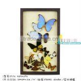 FOUSEN Nature& Art real dried preserved framed butterfly art
