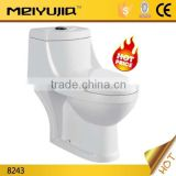 Moslem style toilets with built-in bidet sanitary ware washdown one piece toilet                                                                         Quality Choice