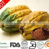Free sample cocoa extract,KOSHER HACCP FDA China manufacturer supply pure natural cocoa polyphenol cocoa extract