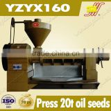 avocado oil cold press machine