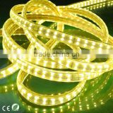 Unique design LED strip 18-20lm/led high voltage 144 led strip double row 220v christmas tree led outdoor led strip