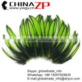 Leading chicken plume supplier ZP Crafts Factory wholesale Bulk Lime Green Laced Hen Cape Guinea Feathers