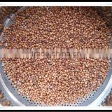 HIGH QUALITY SORGHUM