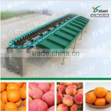 YSXD-66-8-86 single-side fruit sorting machine for peach / apple /tomato/ potato / orange / mango