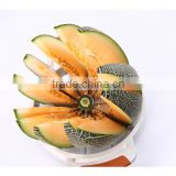 ABS+TPR+S/S 29*21*6.5Kitchen tools large stainless steel melon cutter/cutter knife/round cutter/vegetable & fruit chopper cutter