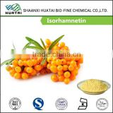100% Pure Sea Buckthorn Extract Isorhamnetin Soluble In Ethanol