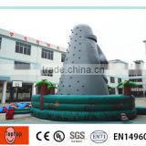 2015 New arrvail outdoor inflatable climbing wall inflatable rock climbings for USA Market