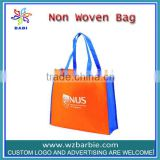 Recyclable Non woven Shopping Bag