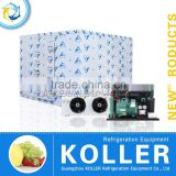Koller 15 tons Freezer Cold Storage Room with refrigeration condenser unit for fishing VCR50