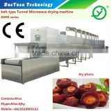tunnel type industrial micrwave peanut dryer /sterilization machine