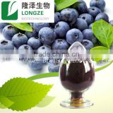 Professional manufactory supply Chinese bilberry P.E/ blueberry spray-dried fruit powder free sample supplied