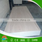 the third-Class grade low price 18mm birch laminated plywood