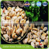 High Quality Seafood Frozen Shellfish Clams without Shell