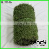 30mm height, green colors with curlve yarn below, monofilament gras yarn, artificial grass production line