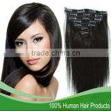 Top Quality Clip In Brazillian Remy Hair Extensions for Black Women