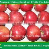Fresh Chinese Huaniu Apple/Red Apple