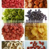 2016 new crop dried fruits preserved pear/peach/kiwi/blueberry/strawberry/dried raspberry cherry