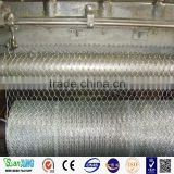 Galvanized Hexagonal Chicken Wire Mesh Bird Cage Material
