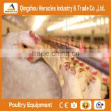 Fully controlled automatic chicken equipment for poultry farm house