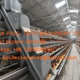 Mexico Chicken Farm A Frame Automatic Layer Chicken Cage & Battery Chicken Cage with 120 birds for Layer Hen