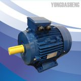 MS series Three Phase Alumium Alloy Housing Electric Motor