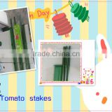 Pe coated steel stake for tomato