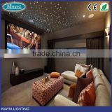 Two motors and dual wheels super bright 10W LED fiber optic projector with DMX function for home decoration