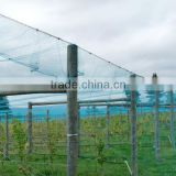 White crystal Color Raschel knitted Polyethylene Agriculture Anti Hail Net/Hail Protection Net