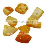 Natural Freshwater Shell Beads, Dyed, Gold(BSHE-S007-2)