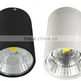 Wholesale price IP65 30W led waterproof downlight With White/Black Housing Colors