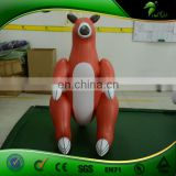 Animal Toy Inflatable Kangaroo