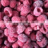 supply cheap and high quality Frozen Raspberry