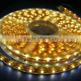 DC12V/24V 300LEDS 5M/reel SMD 3528 Epoxy Waterproof LED Ribbons,IP66 led plastic strips,led tapes,