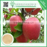 Organic 5% Apple Cider Vinegar Powder