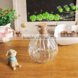 clear glass wishing bottle with cork,mini glass vase