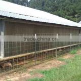Automatic Chicken Farm for Broiler