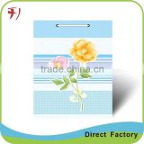 Gift Bag with good printing service