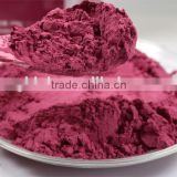 Evergreen High quality Acai berry extract