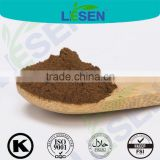 Factory Supply Organic Cocoa Extract Powder