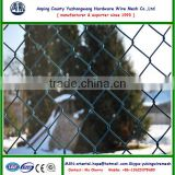 Plastic coated green diamond chain link fence ( Anping manufacturer )