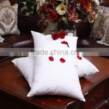 Wholesale Newly Design Feather Down Inserts Pillow